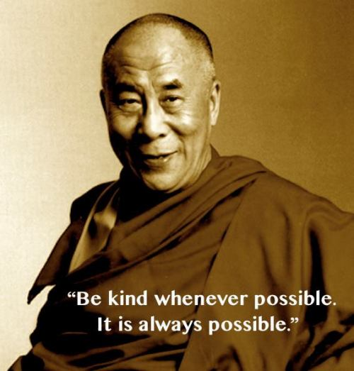 damzlfly:  a-fraction-of-my-awareness:   Be kind whenever possible. It is always possible.  ~ Dalai Lama  I find it difficult to be kind to douchebags and spoiled brats but it has to be done. Uhhuh.