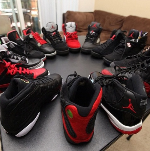 jordanreup:  Daily bred