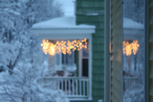 fresh snow + twinkle lights = pretty by Dayben on Flickr.
