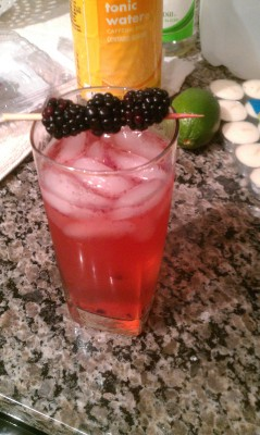 Blackberry gin and tonic from last night. I am good.