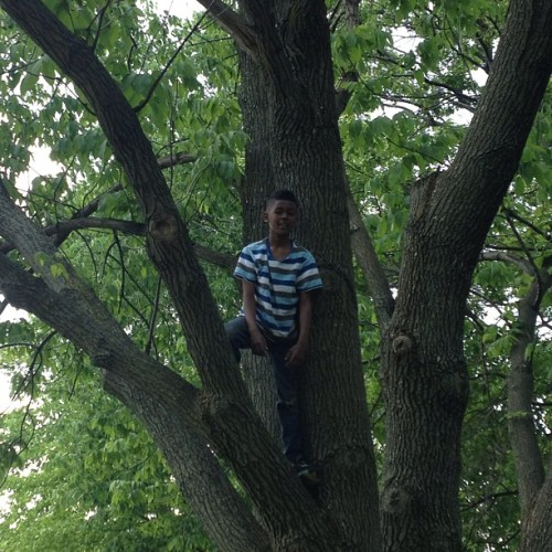 Khalil climbing trees. He loves the outdoors.