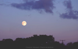 """Like the moon, we borrow our light""- By Chloe Heaney Photography  Chloe Heaney Photography's Official Facebook"