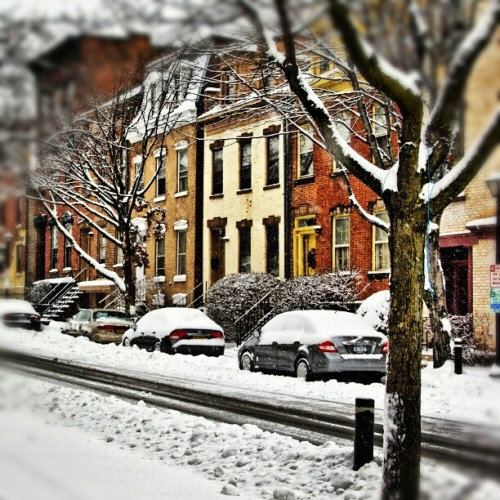 Our neighborhood looks so pretty in the snow. #Albany #AlbanyNY #NewYork