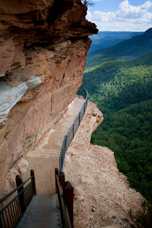 eqiunox:  theoceanrolls:  Blue Mountains (by dtedesco)  This is what I see every time I walk outside. So beautiful