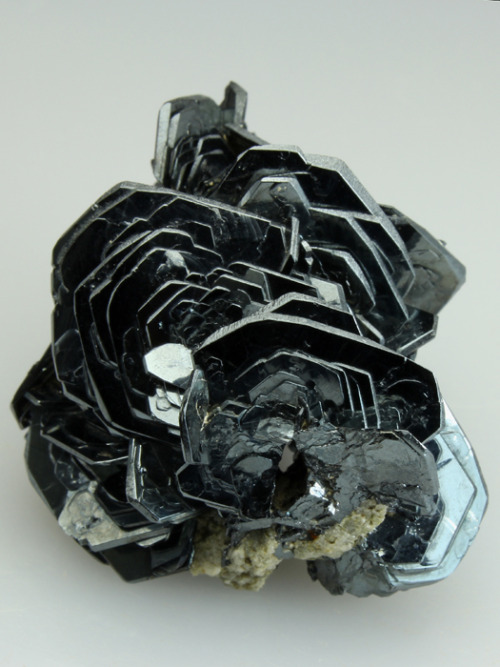 "themineralogist:  ""Iron-Rose"" Hematite from Switzerland"
