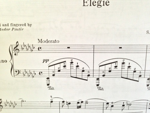 Thanks, Rachmaninoff. Not everyone's hands reach a 13th like yours.