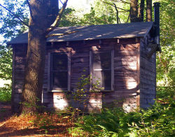 Edna St. Vincent Millay's Writing Cabin at Steepletop, Austerlitz, NY, USA.