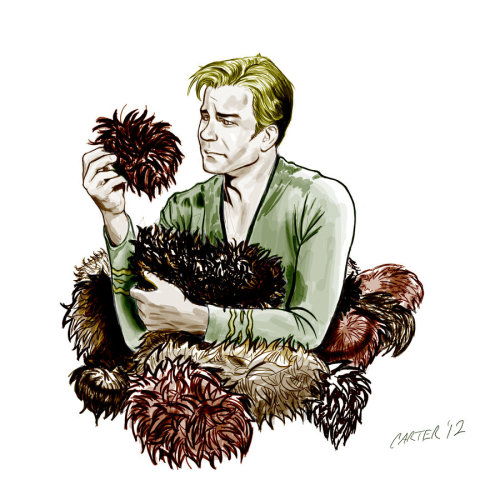 just-a-melancholy-dream:  Tribble Trouble by ~Coleman