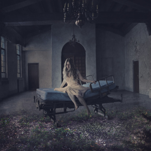 a room for dreams (by brookeshaden)