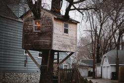 nickolasjensen:  Treehouse cabin on Bell Ave between Bowmanville Ave and Berwyn Ave in Chicago, Illinois.   Photo by Erik Alvarez Jensen.   I must go find this.