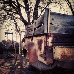 Rust & tractors (at Terry, MT)