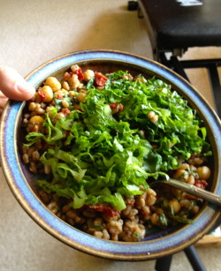 Margarita Bowl:  Farro, chickpeas, sun dried tomatoes, and basil topped with shredded Romaine