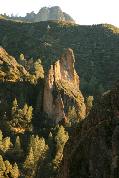 touchdisky:  Pinnacles National Monument | Australia by San Francisco Gal