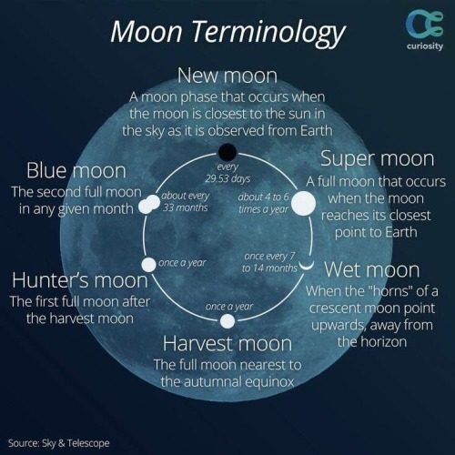 Blue Moon Diagram Simple Electronic Circuits