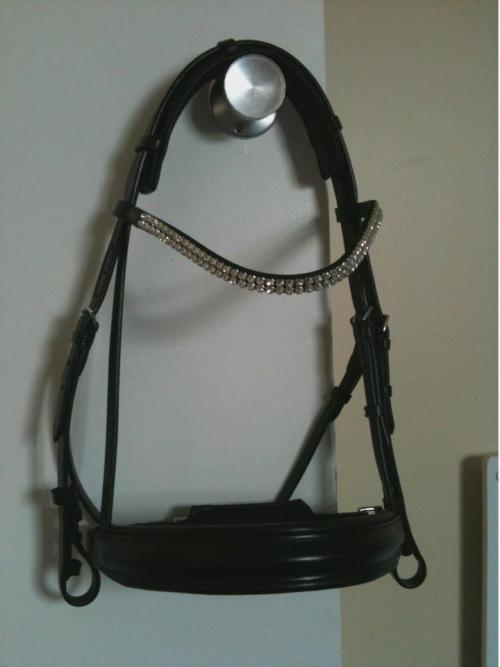 Mini's new $500 Schockemöhle bridle! Isn't it beautiful :D