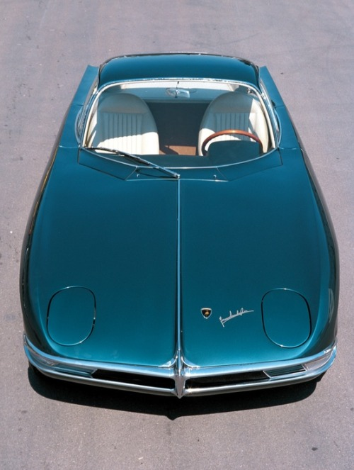"Cool Whip: 1963 Lamborghini 350GTV Conveyer Of Cool ""Stay COOL"" Tumblr 