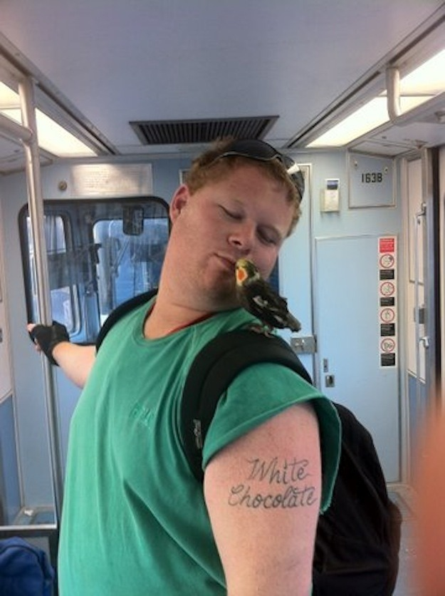 unabating:  fucknobadtattoos:  everything about this  Everything about this is perfect