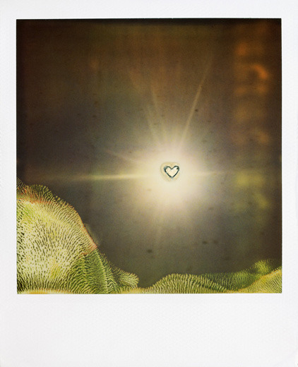 Mimi YounOne Love, 2010Polaroid Happy Valentine's Day