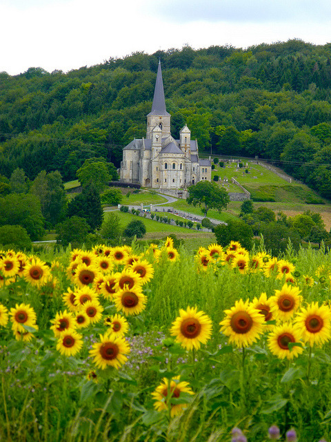 Eglise Notre Dame France Mont-Devant-Sassey Romanesque meuse lorraine europe travel eglise church Francia frankreich sunflower landscape