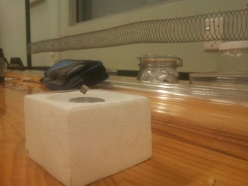 timpaisley:  May 1st: I did this in Physics today. It's an electromagnet surrounded by a pool of liquid nitrogen (which is great fun to play around with). And yes, the cube is floating.