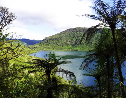 Lake Rotokakahi (Sacred Green Lake), Rotorua, New Zealand