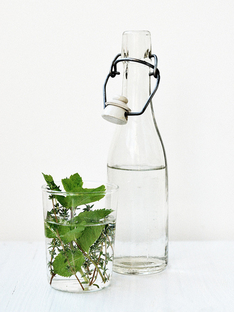 valscrapbook:  Thyme Water by Ornamelle on Flickr.