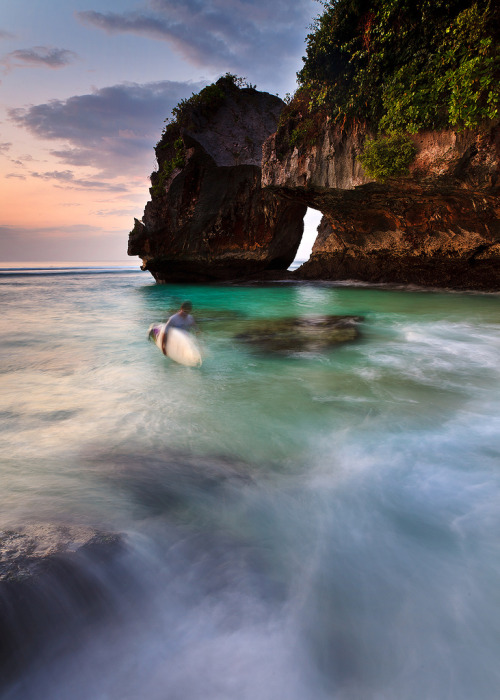 Bluepoint  Bali (by ©Helminadia Ranford)