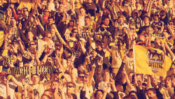 Wellington Phoenix FC 0—0 Central Coast Mariners FCWestpac Stadium, Wellington: att. 6,928.14th of September 2008, round 4.