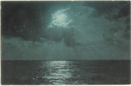 Moonlight over the sea- postcard by Rescued by Rover http://flic.kr/p/dwwFSQ