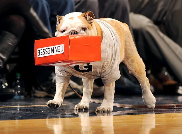 Jack the Bulldog, the mascot of the Georgetown Hoyas, boxes out the Volunteers during the SEC-Big East Challenge last week. (Mitchell Layton/Getty Images) GALLERY: Did You See That?