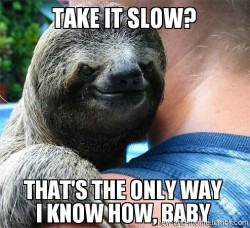 new-and-meme:  Suspiciously Sexy Sloth
