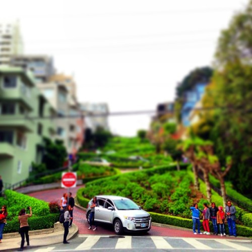 lombard street: not too windy to drive down… (at Lombard Street)