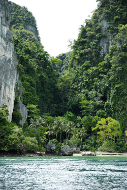 greaterland:  Phi Phi (by mateovic)