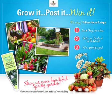 Win $500.00 (via SPRING CONTEST: Grow It, Post It, Win It! | Compass Pointe)