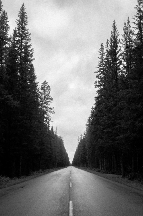 travelingcolors:  Alberta's Highway A1 | Canada (by Nicholaszalud)