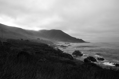 radventurers:  a foggy pacific coast landscape. california. 2012 -chip