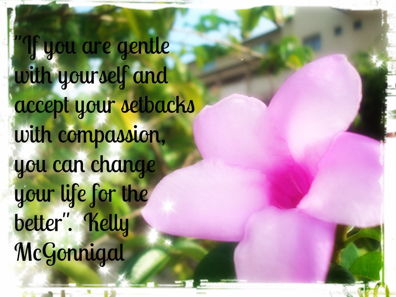 """If you are gentle with yourself and accept your setbacks with compassion, you can change your life for the better"". ~Kelly McGonigal"