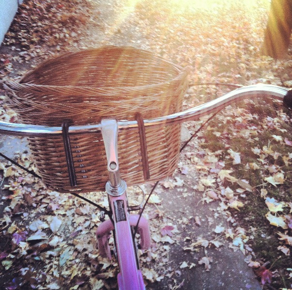 floricawild:  riding through the autumn leaves :)  instagram: lizziebaxter