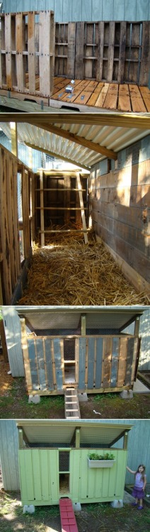 urbanhomesteaders:  Chicken coop upcycled from pallets, check it!!  This is genius.  I want to make one.