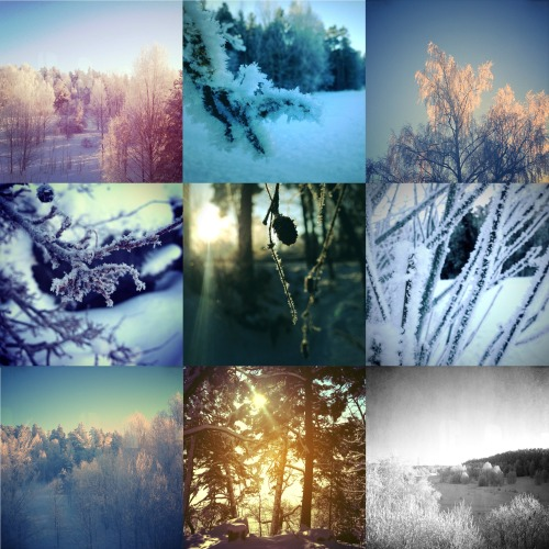 Swedish winter wonderland. Photos by me :)