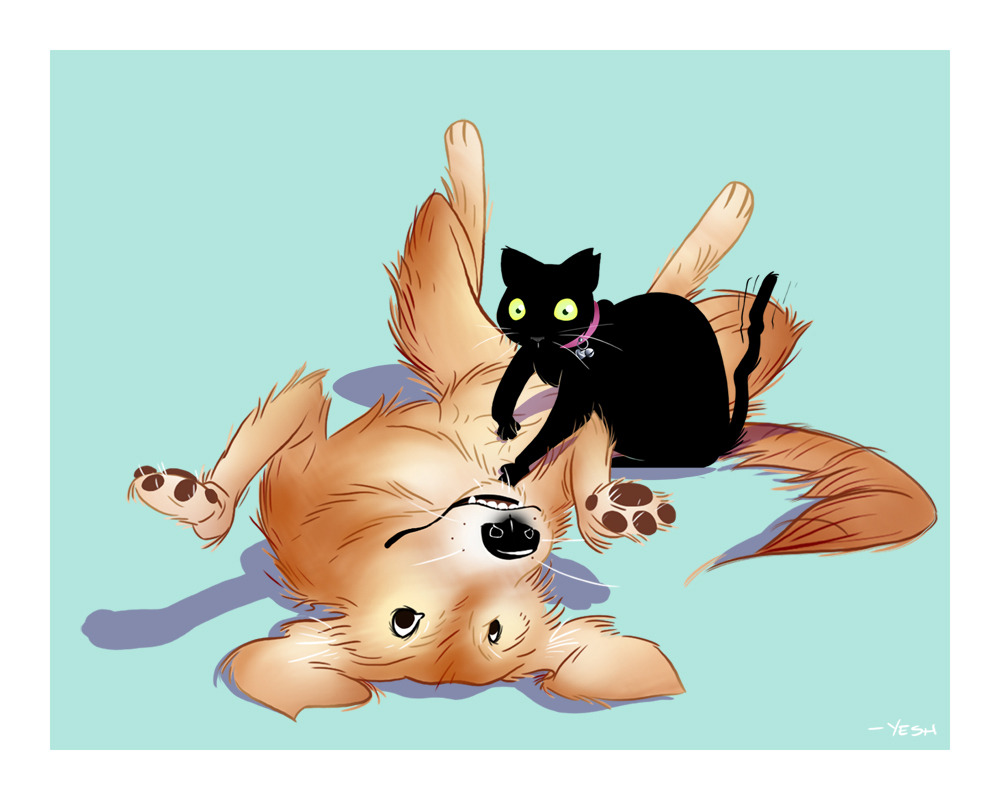 for a friend's birthday. The dog she grew up with (molly) and her current cat (fred).