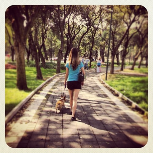 Walking On a Dream  (at Parque Gandhi)