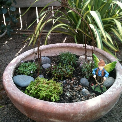 Made a new fairy garden:3