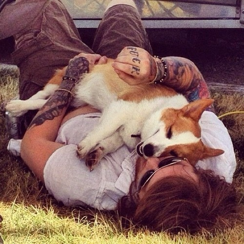 maxincorporation:     Danny Worsnop and adorable Corgi of Asking Alexandria Band blog. follow for more. c: xx