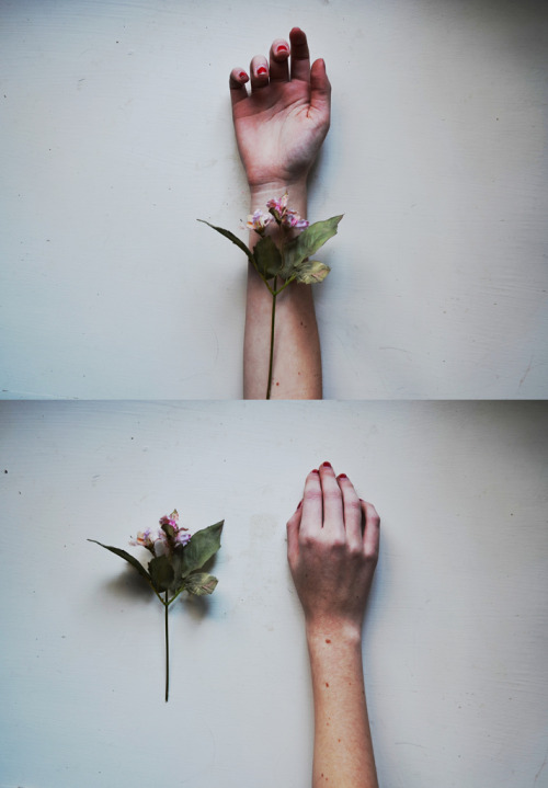 hellanne:  fragile things (by rebecca∞mahoney)