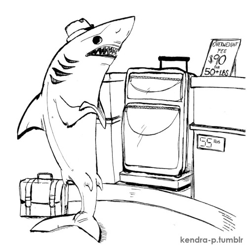 kendra-p:  Sharks coping with contemporary inconveniences