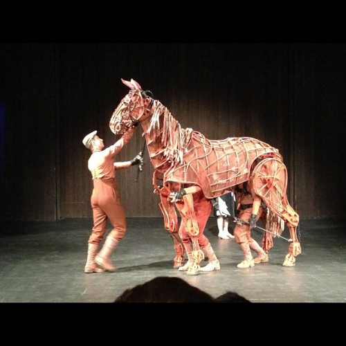 Warhorse presentation for my Creativity class lecture. Freaking awesome! 🐎❤ (at Seymour Theatre Centre)