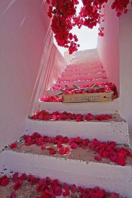villacollezione:  bougainvillea, white-washed walls, white steps… definitely somewhere in greece villacollezione.me villacollezioneboutique.com