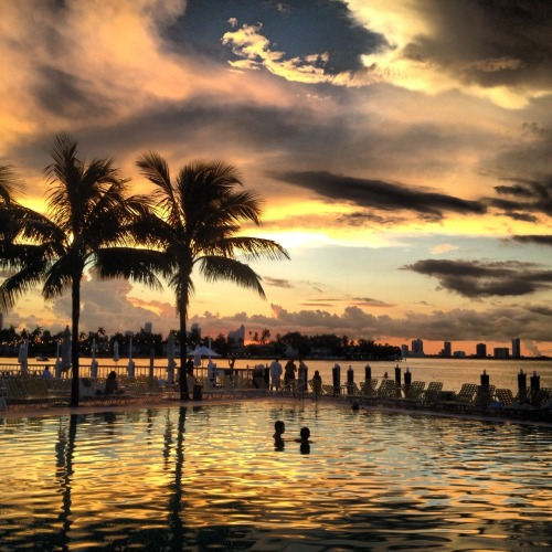 thehumblemind:  Sunset at The Standard Spa, Miami Beach