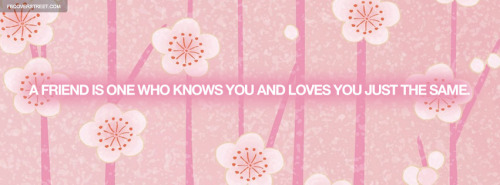 Pink Facebook Covers